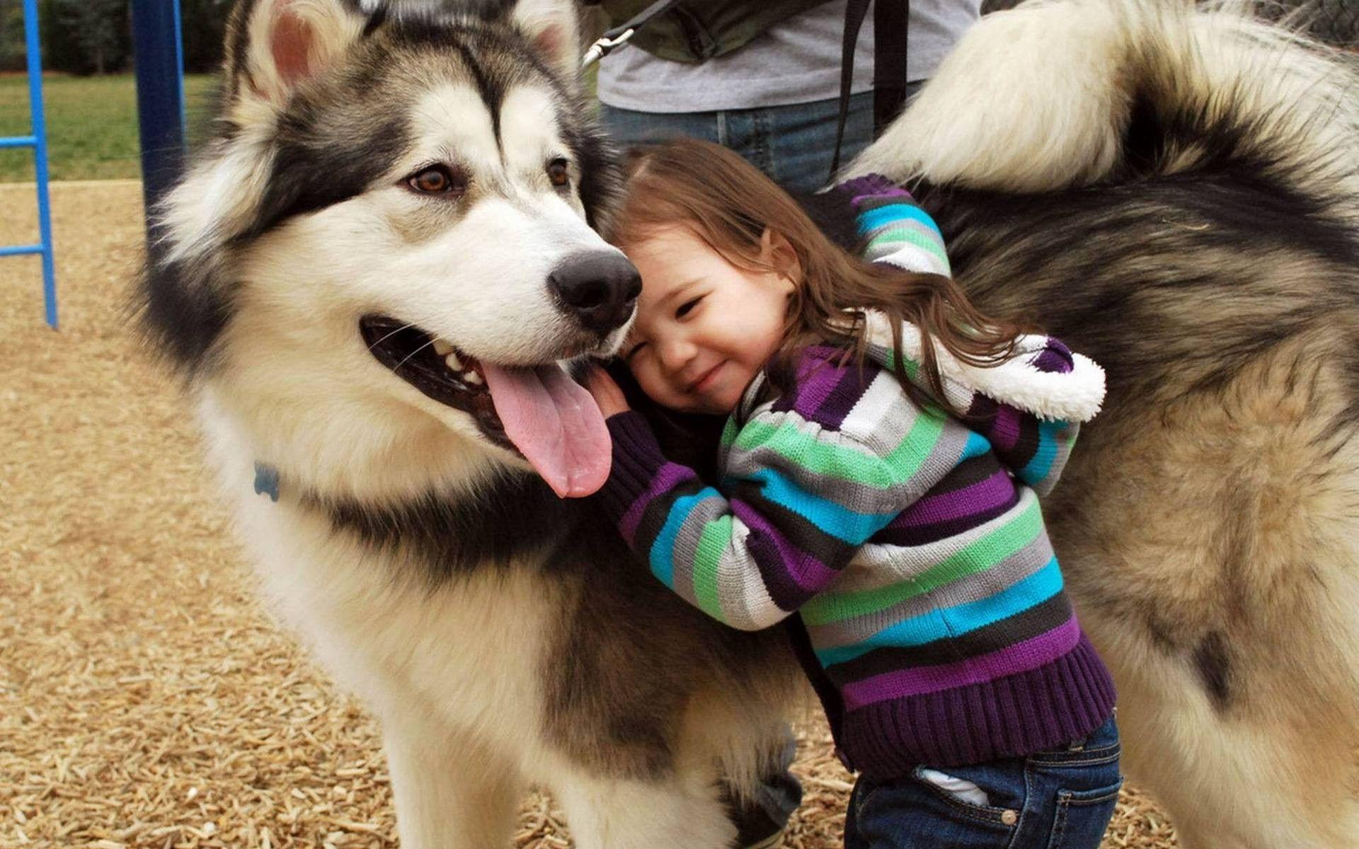 Значение домашних животных в развитии детей
