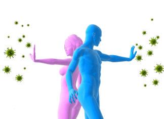 Иммунная система организма человека